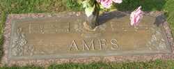 Edgar Holt Ames