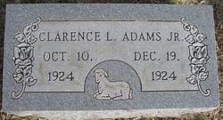 Clarence L Adams, Jr