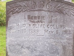 Bertie Idell Collins