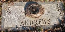 Ann M Andrews