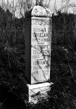 Susan E. Dickson