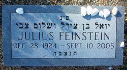 Julius Feinstein