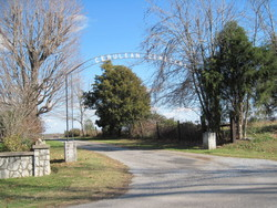 Cerulean Cemetery