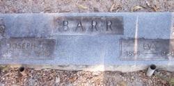Evelyn Augusta Eva <i>Biddy</i> Barr