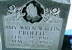 Annie Isabelle Amy <i>Wren</i> Wallin, Proffit