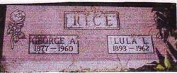 Lula Lillian <i>Haydon</i> Rice