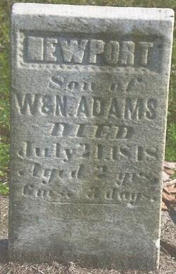 Newport Adams