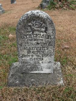 Cynthia Amelia Hawkins