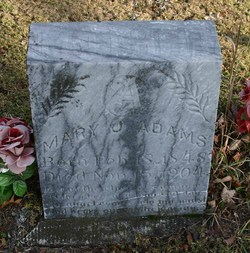 Mary Jane <i>DeWitt</i> Adams