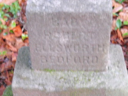 Robert Ellsworth Bedford