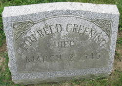Lou <i>Reed</i> Greening