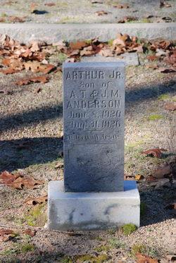 Arthur T Anderson, Jr