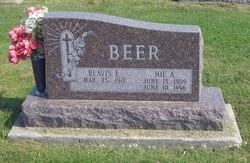 Joe A. Beer