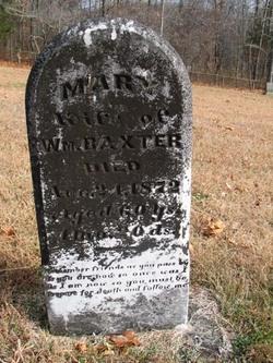 Mary Ann Polly <i>See</i> Baxter