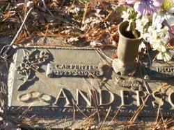 Carpenter Anderson