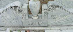 James Allen Gunter