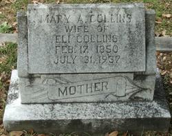 Mary Ann <i>Howe</i> Collins
