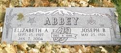 Elizabeth Ann Liz <i>Danielson</i> Abbey
