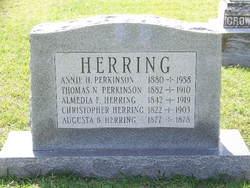 Annie <i>Herring</i> Perkinson