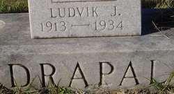 Ludvik J Drapal