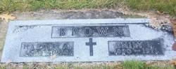 Harold A Brown