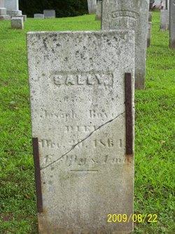 Sally Boyes