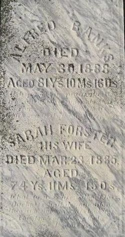 Sarah <i>Forster</i> Banks