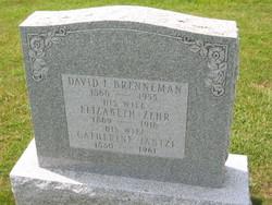 David L. Brenneman