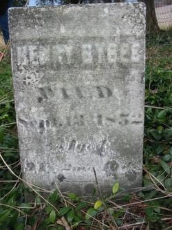 Henry Bybee