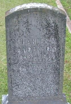 Charles McDermott Anderson