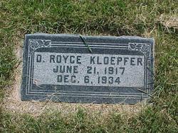 D Royce Kloepfer