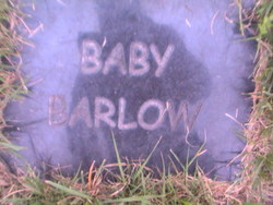 Baby Barlow