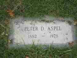 Peter D Aspel