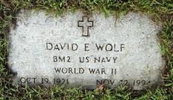David E. Wolf