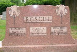 Elizabeth Rosche <i>Dorr</i> Bluman