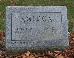 Donald A Amidon