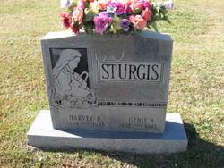 Genie A. Sturgis