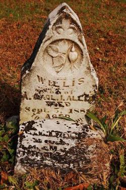Willis Allen