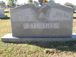 Andrew F. Andy Sturgis