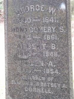 Albert B Cornell