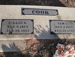 Lillie Elizabeth <i>Arnold</i> Cook