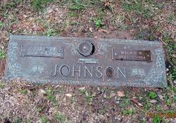 John Elliott Johnson
