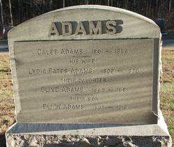 Caleb Adams