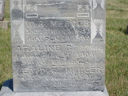 Adeline (Ada) <i>Garman</i> Mercer