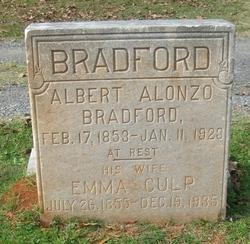 Albert Alonzo Bradford