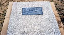 Elzy Anson Davis