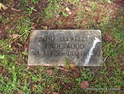 Jehu Llewellyn Underwood