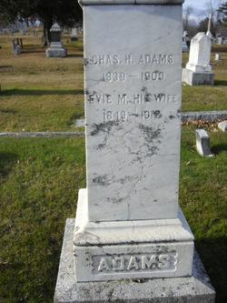 Evie M. Adams