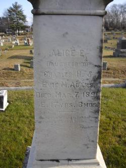 Alice E. Adams