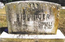 Charles Edward Biddinger
